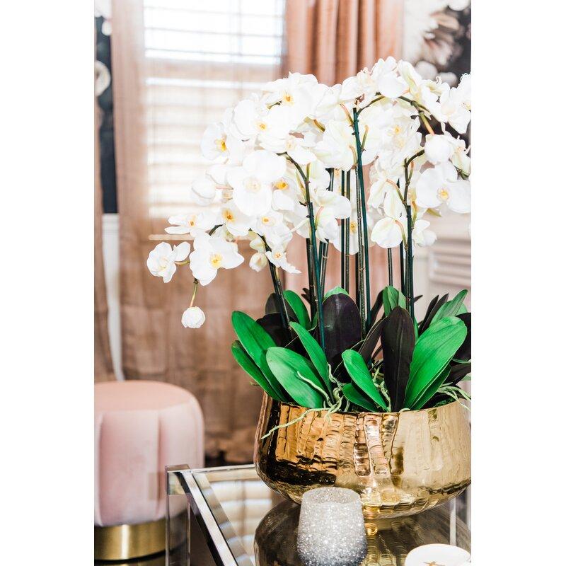 floral home decor orchid floral design wayfair.htm everly quinn phalaenopsis orchids floral arrangement in planter  everly quinn phalaenopsis orchids