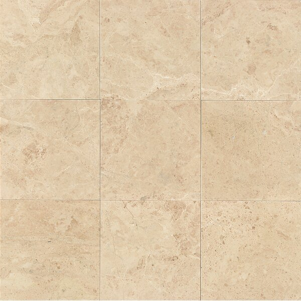 Floor Tile You'll | Wayfair on bathroom jacuzzi designs, bathroom with fireplace designs, bathroom with vanity designs, entry hall with wood and tile floor designs, bathroom with laundry designs, bathroom with shower designs, bathroom with walk in closet designs, bathroom with tub designs, bathroom slate floor designs,