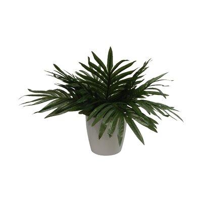 Bungalow Rose Modern Palm Plant Decorative Vase