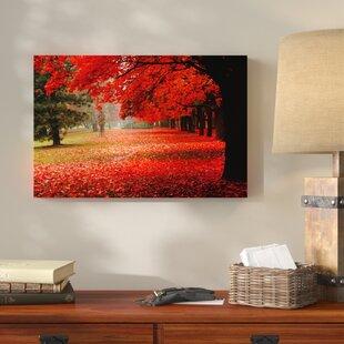 See Park Wald Herbst Leinwandbilder Fotodruck