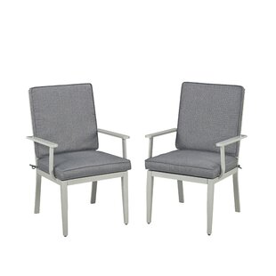 Dinan Patio Dining Chair with Cushion (Set of 2)