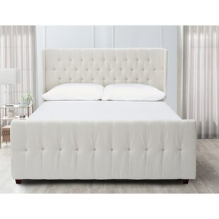 Best Review Brie Upholstered Panel Bed by House of Hampton Reviews (2019) & Buyer's Guide