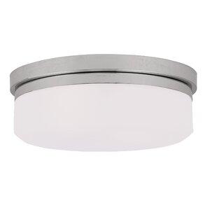 Cerie 2-Light Glass Shade Flush Mount