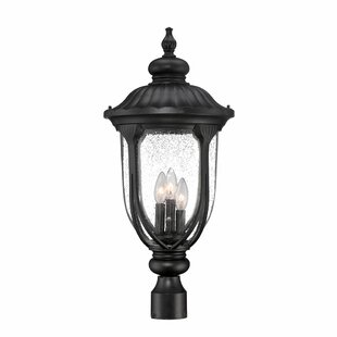 Great Price Angie Outdoor 3-Light Lantern Head By Fleur De Lis Living