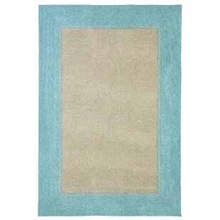 Enoch Border Hand-Woven Brown/Turquoise Indoor/Outdoor Area Rug