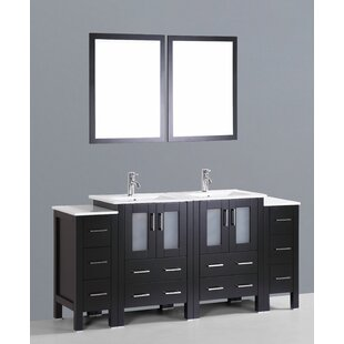 Netto 73 Double Bathroom Vanity Set with Mirror by Ebern Designs