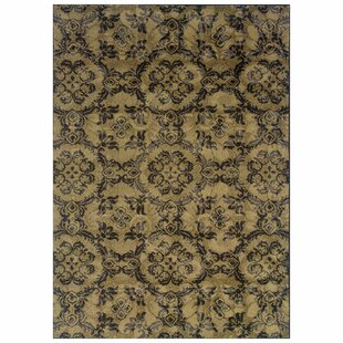 Purchase Tarquin Woven Gray/Black Area Rug ByBloomsbury Market