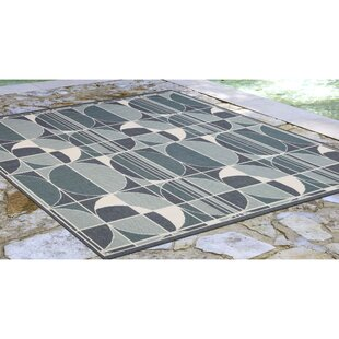 Corr Circles Blue Indoor/Outdoor Area Rug
