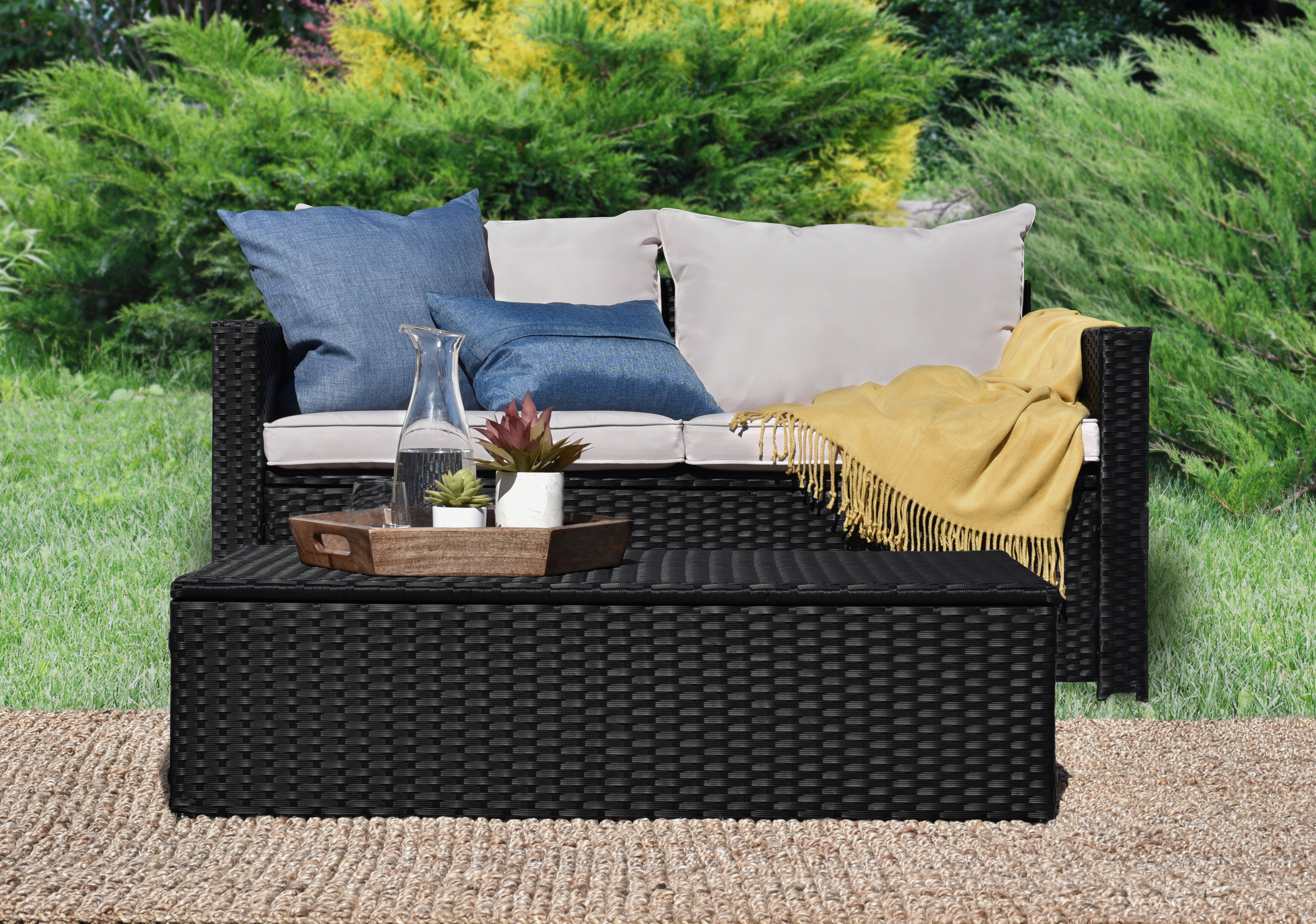 Swell Laguna 2 Piece Sofa Seating Group With Cushions Caraccident5 Cool Chair Designs And Ideas Caraccident5Info