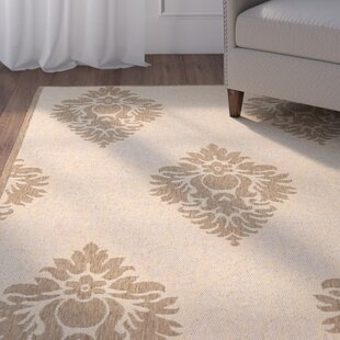 Herefordshire Transitional Durable Indoor/Outdoor Area Rug