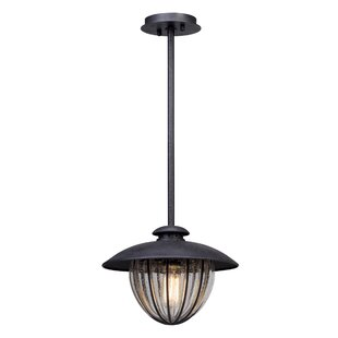 Reviews Torrence 1-Light Outdoor Pendant By 17 Stories