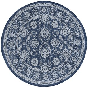 Haywards Traditional Border Navy Indoor/Outdoor Area Rug