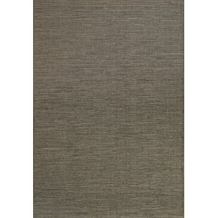 Franzen Gray Indoor/Outdoor Area Rug