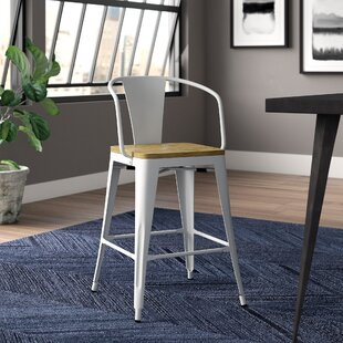 Fort Fairfield Dining Chair (Set of 2) Trent Austin Design