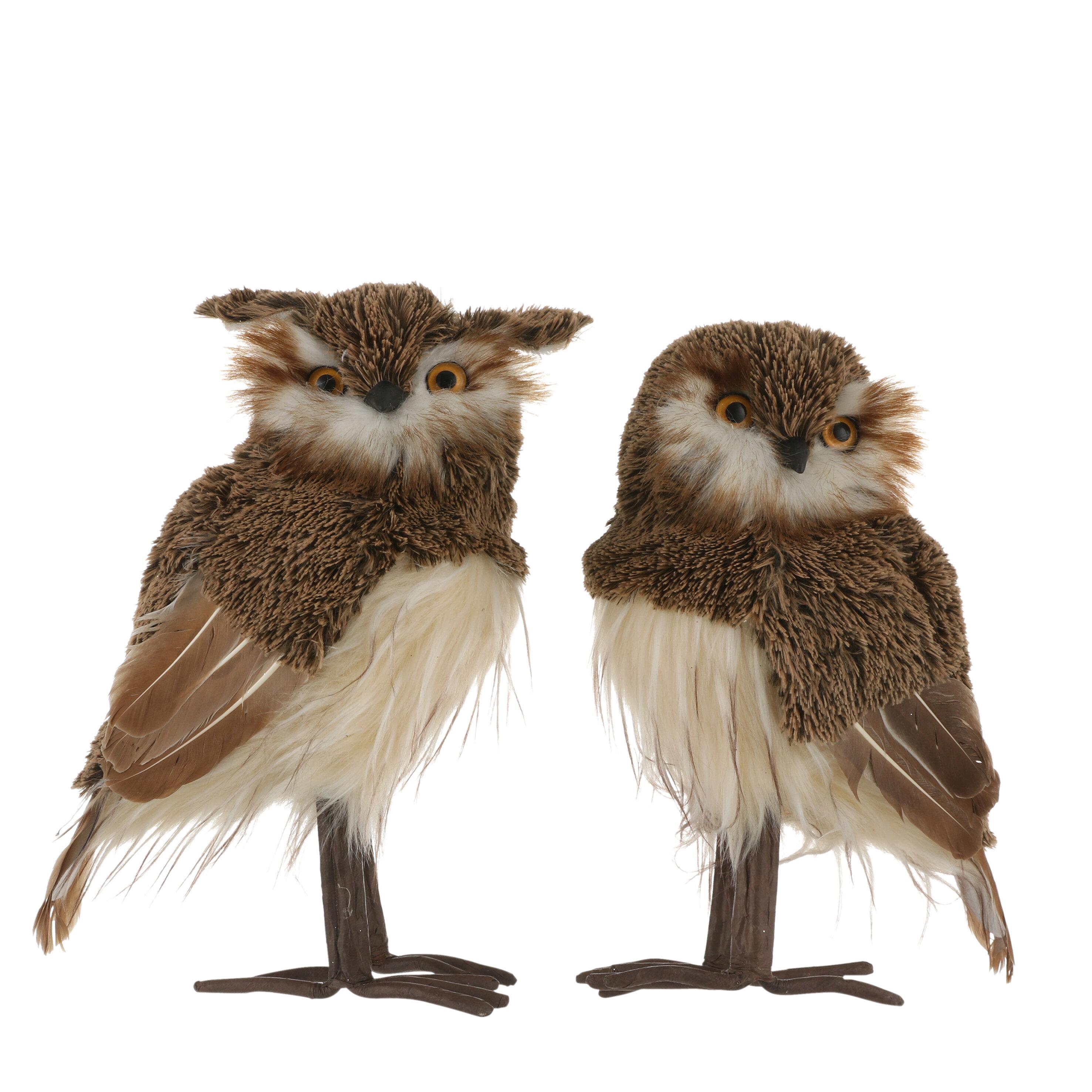 Loon Peak 2 Of Pieces Calabrese Med Owl Figurine Wayfair