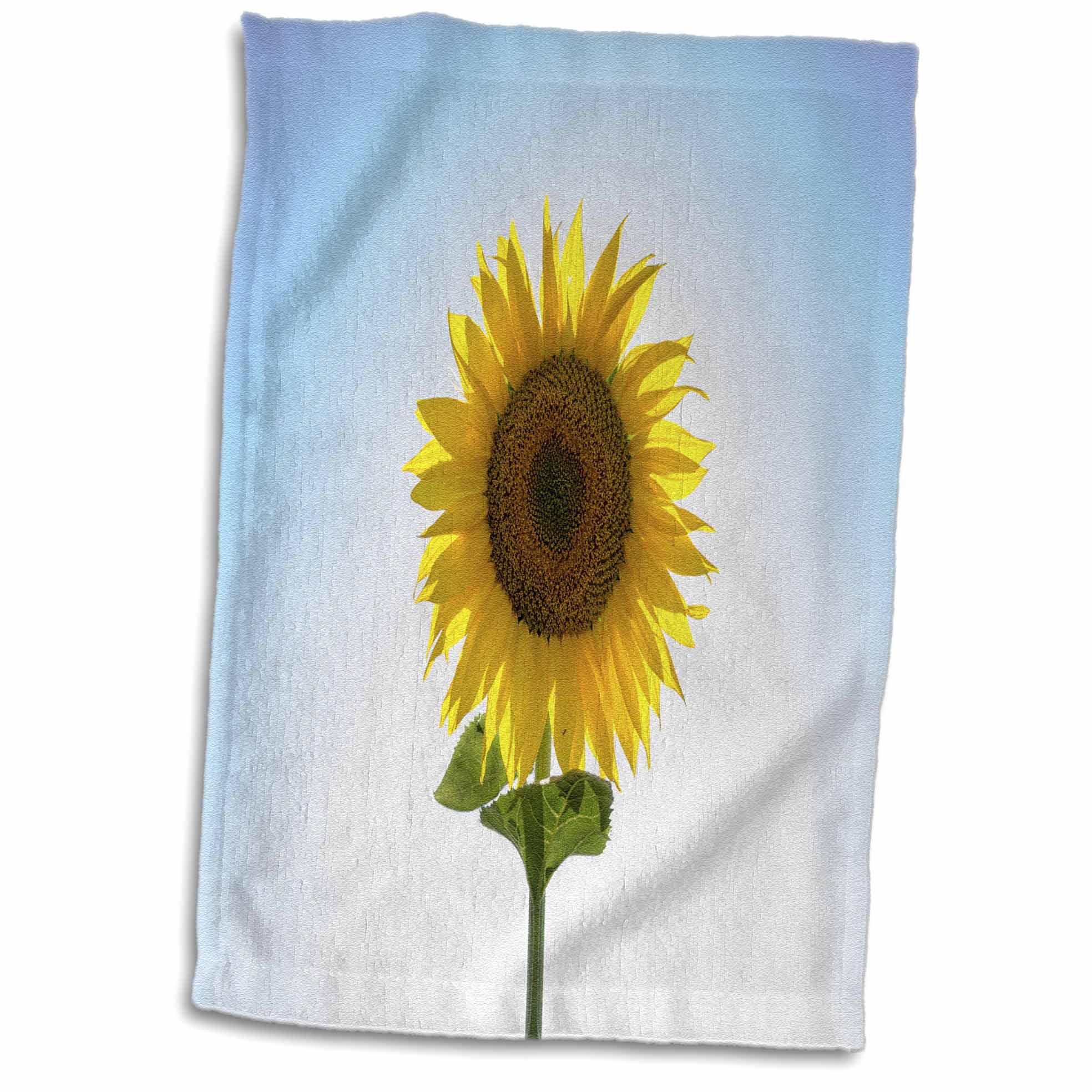 East Urban Home Abner Photograph Of A Sunflower Hand Towel Wayfair
