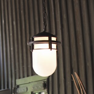 Warriner 1-Light Outdoor Hanging Lantern