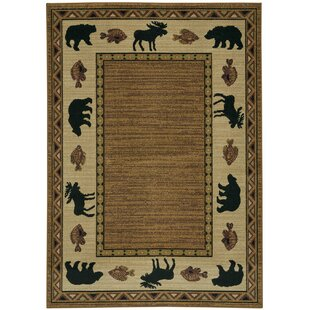Cheney Coffee Indoor/Outdoor Area Rug