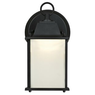Drinnon LED Outdoor Wall Lantern
