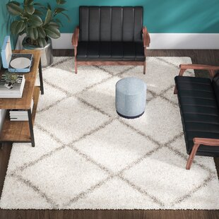 Compare Duhon Ivory/Gray Shag Area Rug By Mercury Row