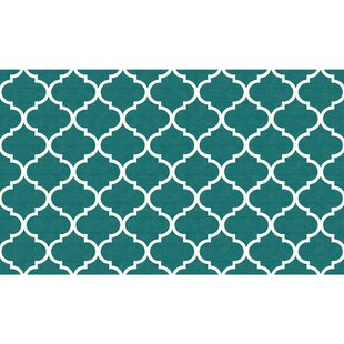Teal Indoor Outdoor Accent Rug