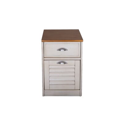 Bridgeview 2 Drawer Mobile File Cabinet by Beachcrest Home