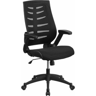 Dunson Ergonomic Mesh Task Chair by Ebern Designs 2019 Sale