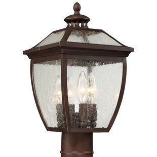 Comparison Auer Outdoor 4-Light Lantern Head By Darby Home Co