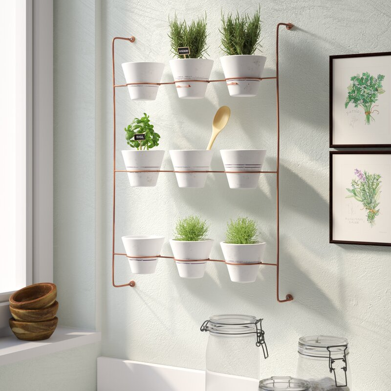 hanging wall planter for bathroom plants