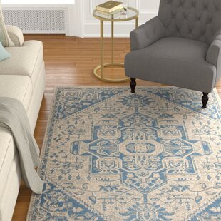 Kenneth Blue Cream Area Rug Wayfair