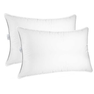 Sleeping Plush Down Bed Pillow (Set of 2)