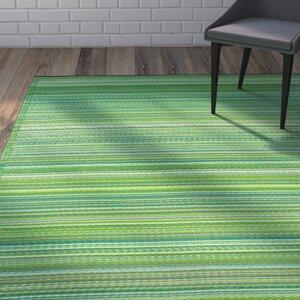 Raub Hand-Woven Green Indoor/Outdoor Area Rug