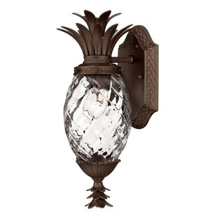 Check Prices Terry 1-Light Outdoor Wall Lantern By Beachcrest Home