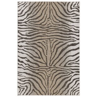 Add An Extra Layer Of Dimension Style And Personality To Your Home With The Addition Area Rug E
