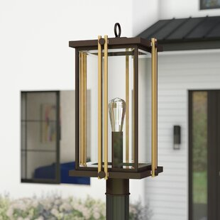Buying Francois 1-Light Lantern Head By Willa Arlo Interiors