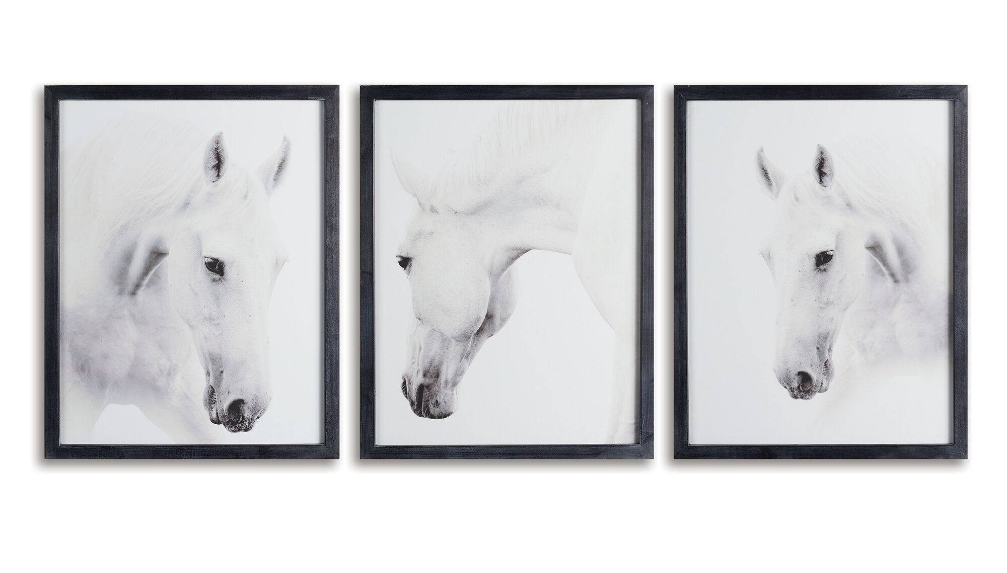 Gracie Oaks Wild Horses Prints 3 Piece Picture Frame Photograph Wall Art Set Wayfair
