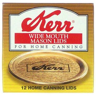 Wide Mouth Canning Jar Lids (12 Count) (Set of 12)