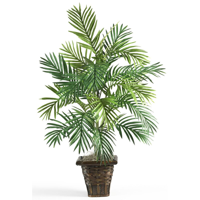 entracing palm tree type house plant. Silk Areca Palm Floor Plant with Pot Nearly Natural  Reviews Wayfair