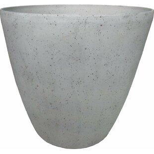 Steadman Pot Planter by Williston Forge