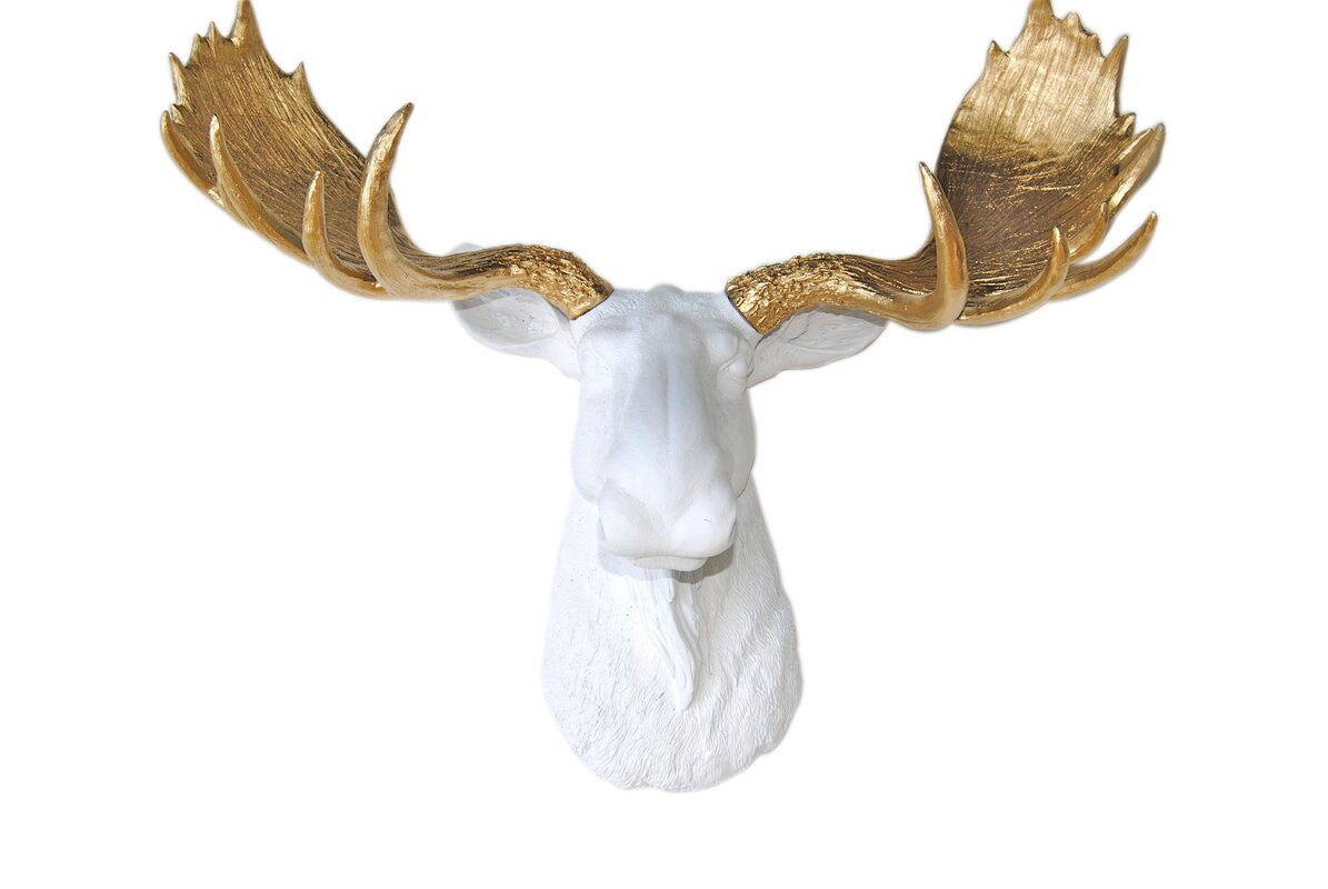 Moose Wall Decor near and deer head faux taxidermy moose wall décor & reviews | wayfair