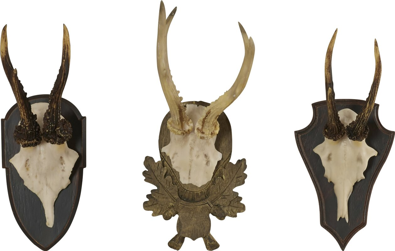 Wall antlers decor todosobreelamorfo wall antlers decor loon peak orient 3 antler trophy wall dcor set reviews amipublicfo Images
