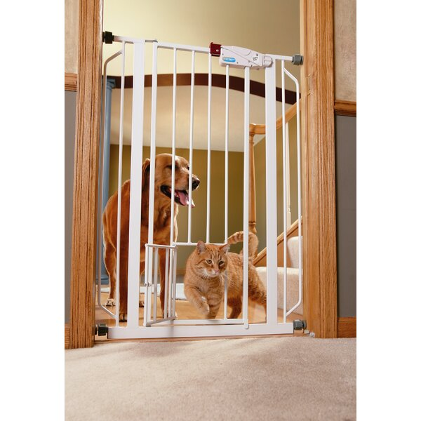 Tucker Murphy Pet Jacqueline Gate Extension For 0941pw Extra Tall