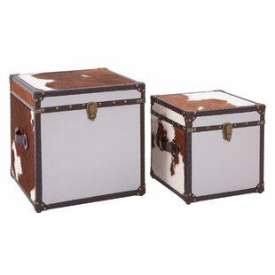 Adalyn 2 Piece Storage Trunk Set