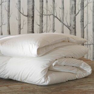 Loure All Season Down Alternative Comforter