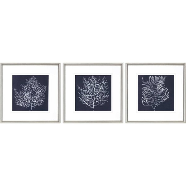 Navy And White Pictures Wayfair