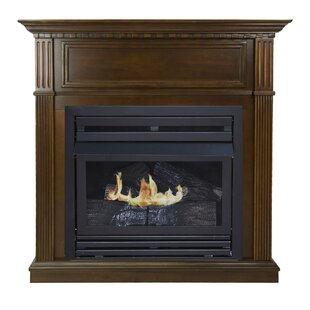 Shela Propane Fireplace by Darby Home Co