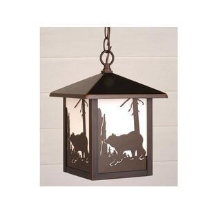 Josefina 1-Light Glass Shaded Outdoor Hanging Lantern