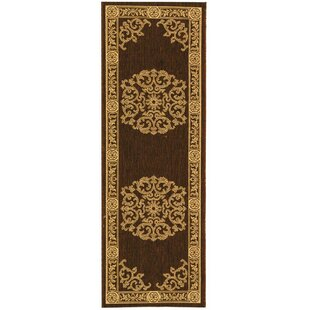 Short Chocolate / Natural Indoor/Outdoor Area Rug