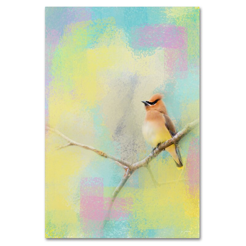 Trademark Art Song Of The Waxwing Graphic Art Print On Wrapped Canvas Wayfair