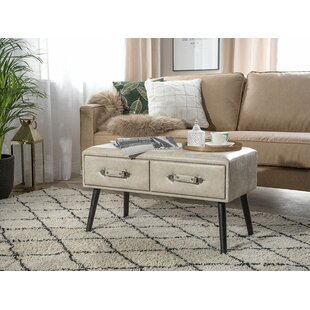 Dalrymple Coffee Table with Storage